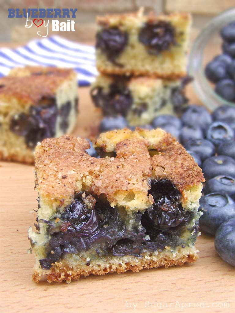 Blueberry Boy Bait (Blueberry Coffee Cake) - Sugar Apron